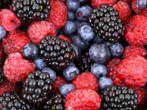 פירות יער דיאטה