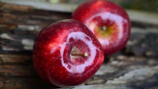 תפוח עץ - מתאים לתזונת ספורטאים