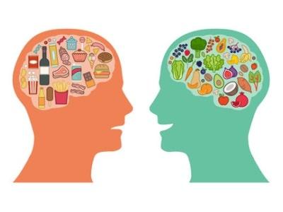 תזונה נכונה למוח