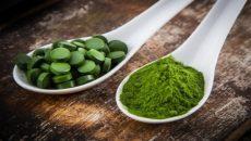 כלורלה - הפורטל לתזונה בריאה