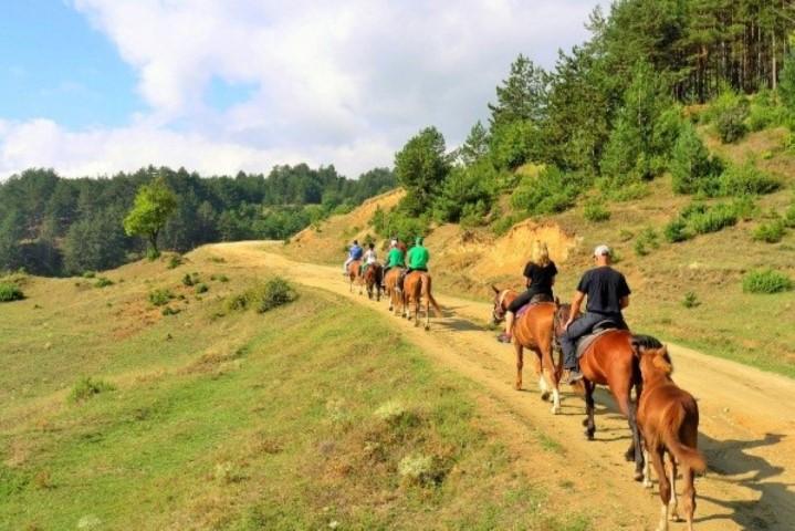טיול סוסים בחופשת בריאות של מדבירא - חניתה הרשקוביץ פיט אנד פאן fit and fun
