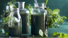 מיץ מטהר של אומינה קדמי, מסייע בתהליך של ניקוי רעלים