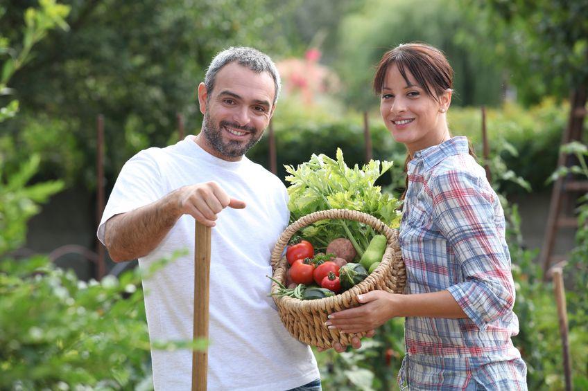 גבר ואישה בגינת ירק מציגים את התוצרת שלהם