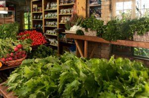 משק שוורצמן, מושב נטעים, ירקות אורגניים