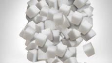 סוכר והמוח