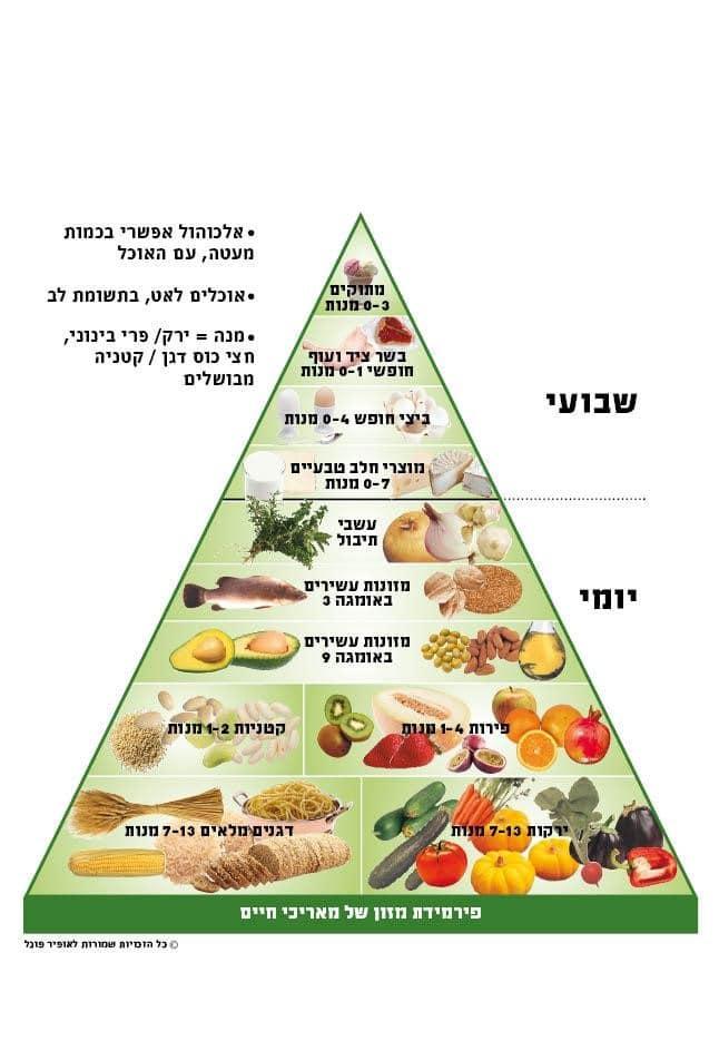פרמידת מזון של מאריכי חיים