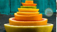 פירמידת המזון - פאנל מומחים