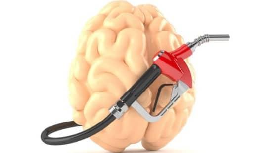 הדלק של המוח