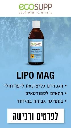 LipoMag_Corner