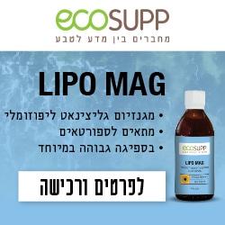 LipoMag_Article