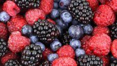 פירות היער מזונות על. צילום: pixabay