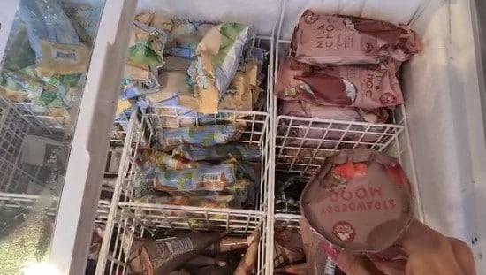גלידות מזינות וטבעוניות בחנות הטבע EKOPLAZA. צילום: אפרת נבון
