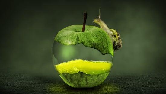 עולם שלם בתוך התפוח. צילום: pixabay