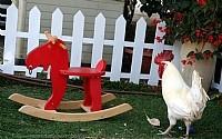 בית עם חצר וגינה ותרנגולת..